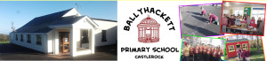 schools_ballyhackett2-300x69